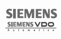 ALD Reliability Software Safety Quality Solutions SiemensVDO bw